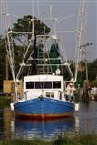 Fishing fleet cleaning or stranded in many places