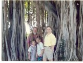 Banyan tree family