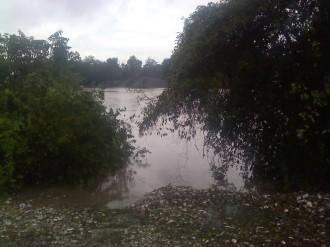 Louisiana August Flood 2016 - 1
